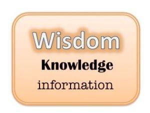 info-wisdom-